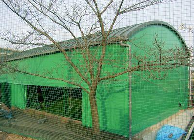 スポーツ施設野球練習場