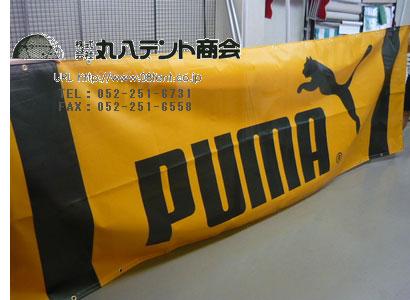 PUMA_1.jpg