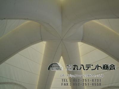 20110713_1920059.jpg